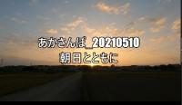 _20210510