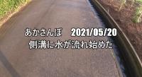 _20210520