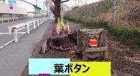 Photo_20210322125701
