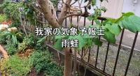Photo_20210523113401